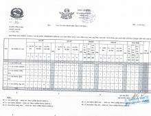 shrawan panjikaran report